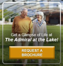 Admiral at the lake