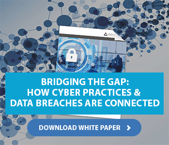 Cybersecurity & Data Breaches White Paper