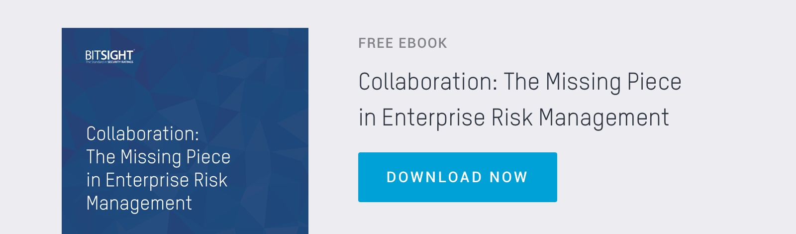 Download The Missing Piece in Enterprise Risk Management