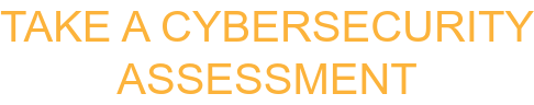 Take A Cybersecurity Assessment