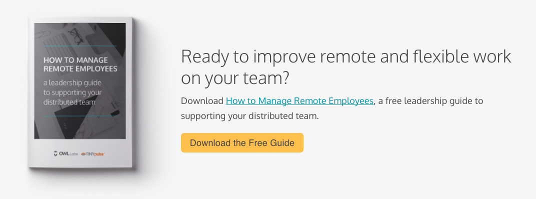 Download the leadership guide: How to Manage Remote Employees