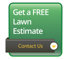 free lawn estimate