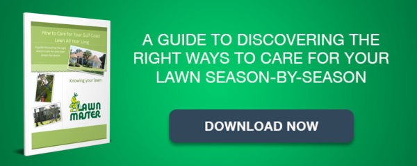 Lawn Master's Seasonal Lawn Maintenance Guide