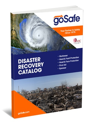 goSafe Disaster Recovery Catalog