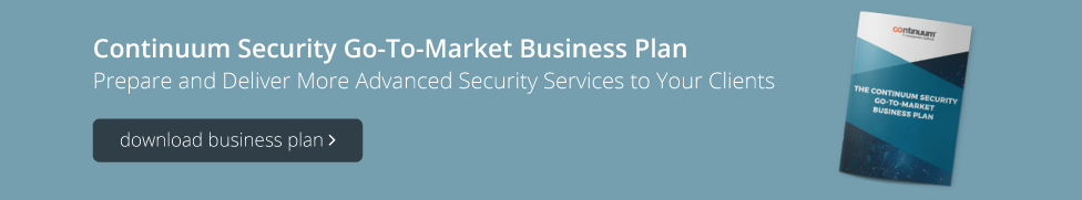 Download Continuum Security Business Plan