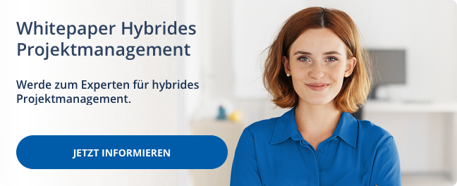Whitepaper Hybrides Projektmanagement