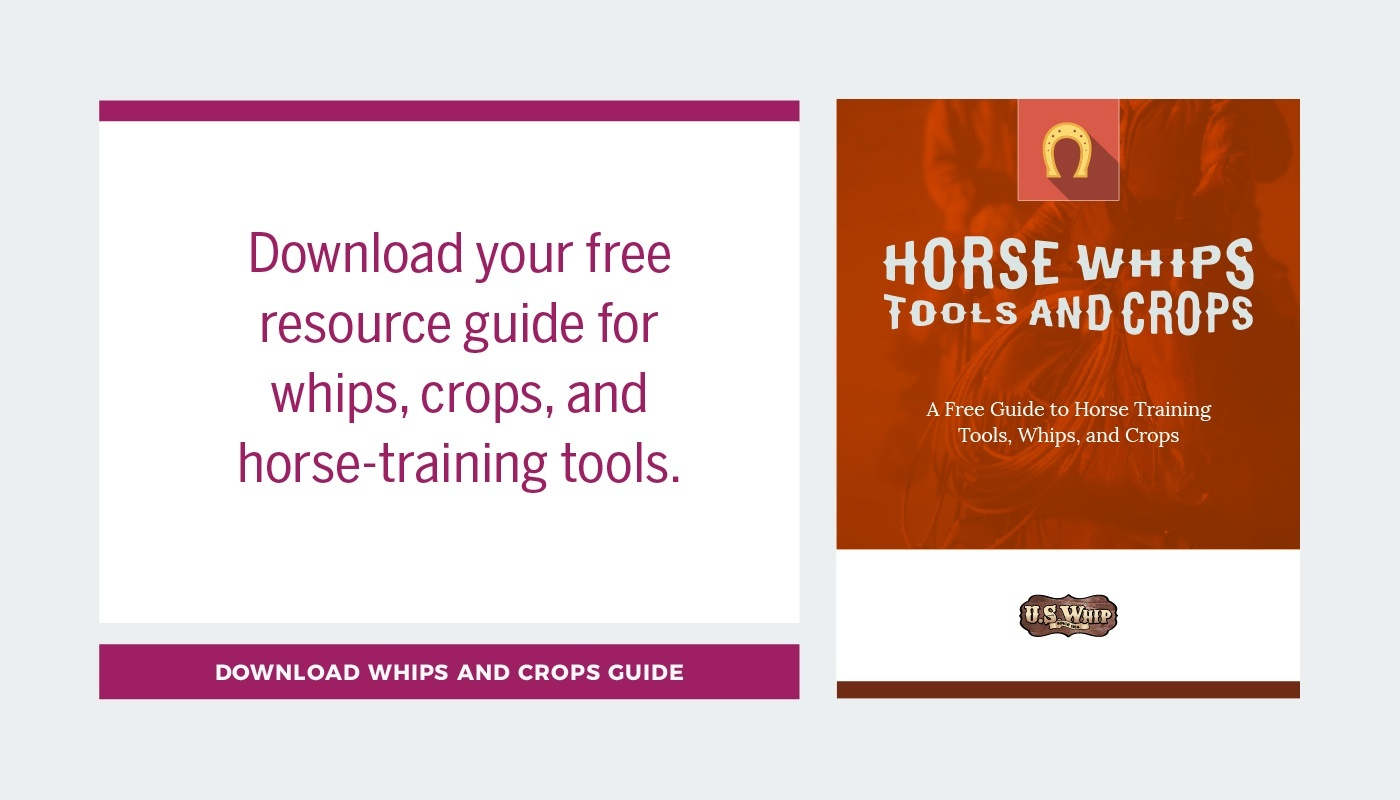 Horse crops and whips