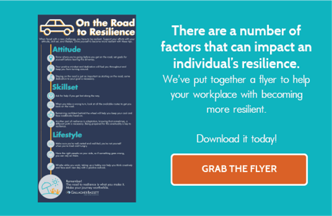 Flyer: On the Road to Resilience