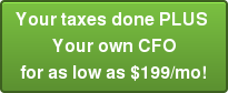 Your taxes done PLUS  Your own CFO for as low as $199/mo!