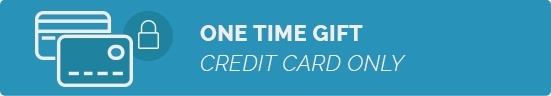 Donate Now - One Time Gift by Credit Card