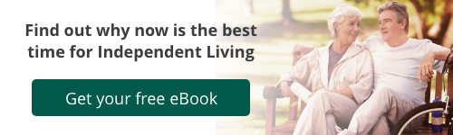 Download free Independent Living eBook