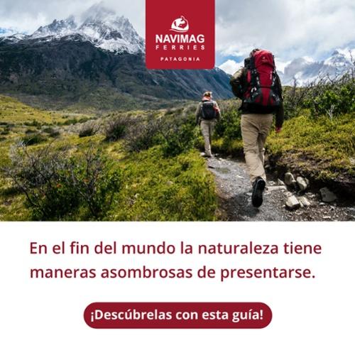 El sur de Chile es un territorio enigmático que comparte sus misterios en verano. Conócelos con la guía de Navimag.