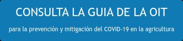 CONSULTA LA GUIA DE LA OIT para la prevención y mitigación del COVID-19 en la agricultura