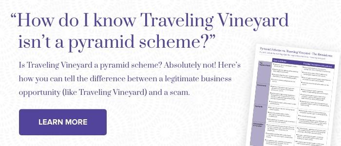 Pyramid-Scheme-vs-Traveling-Vineyard