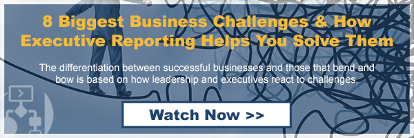 8 Biggest Business Challenges & How Executive Reporting Helps You Solve Them
