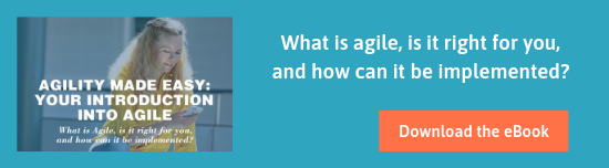 Agility made easy: introduction into agile