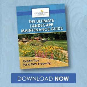 Landscape maintenance tips for Ashburn, Aldie, and Leesburg, VA