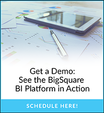 Get a Demo: See the BigSquare BI Platform in Action