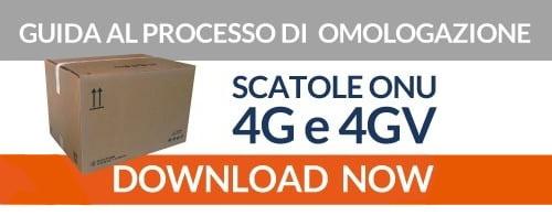 Guida al processo di omologazione 4G e 4GV per le tue scatole