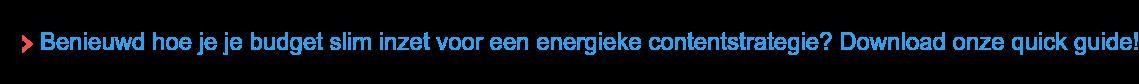 Benieuwd hoe je je budget slim inzet voor een energieke contentstrategie?  Download onze quick guide!