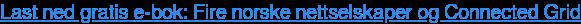 Last ned gratis e-bok: Fire norske nettselskaper og Connected Grid