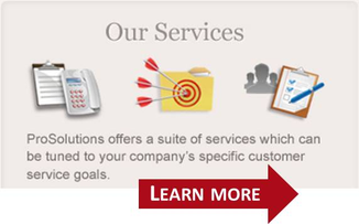 ProSolutions Services