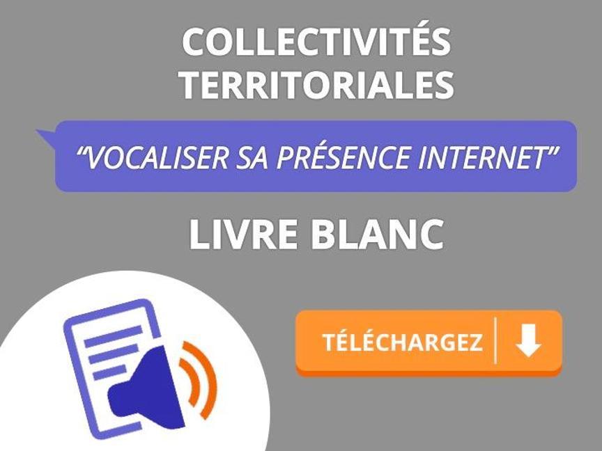 Télécharger livre blanc Vocaliser sa présence internet