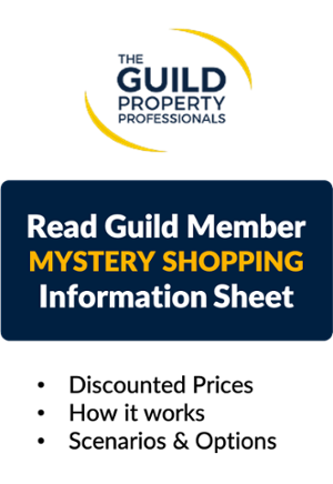Yomdel Guild Exclusive Mystery Shopping Deal