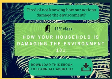 How your household is damaging the environment 101 ebook