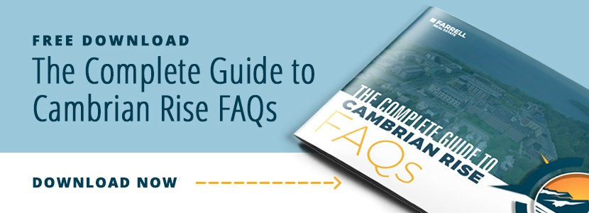 cambrian rise faqs