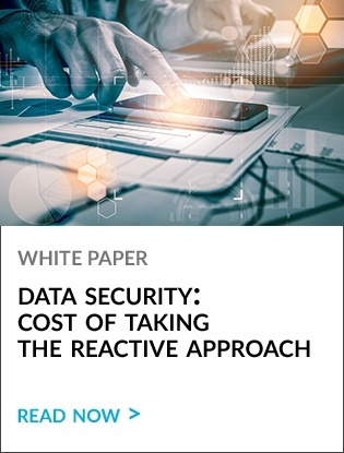 White Paper: Data Security: Cost of Taking the Reactive Approach
