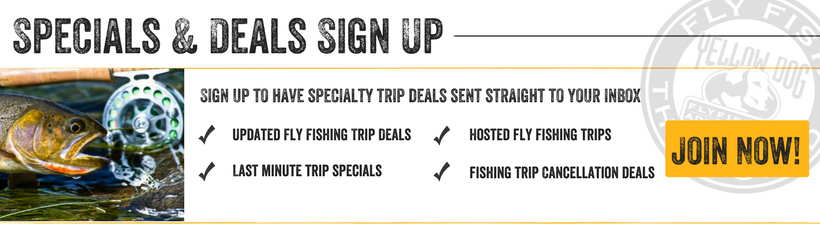 Specials and Deals Fishing Trips