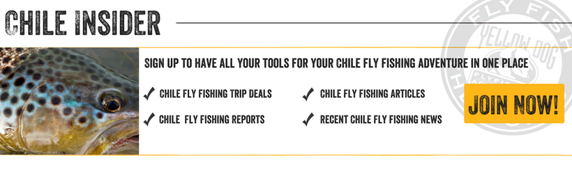 Chile Fly Fishing Insider