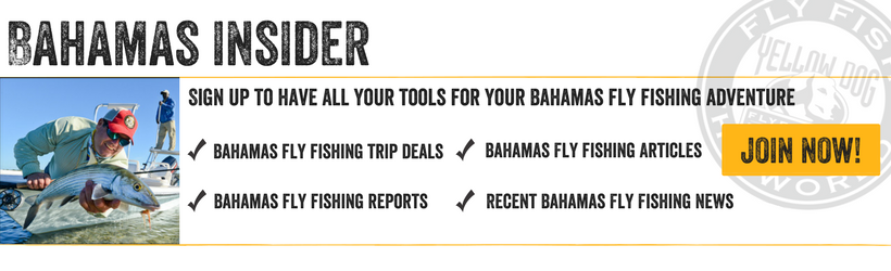 Bahamas Insider