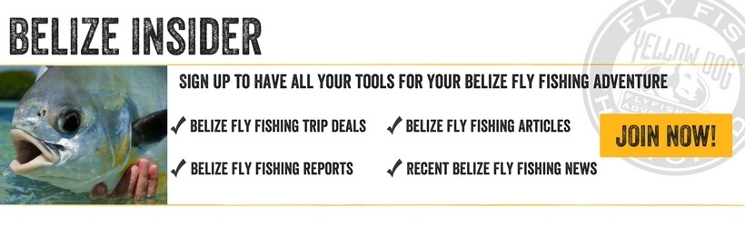 Belize Fly Fishing Insider