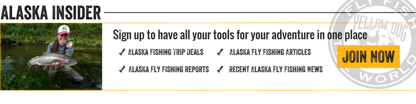 alaska fly fishing insider