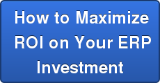 How to Maximize  ROI on Your ERP Investment