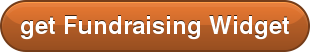 get Fundraising Widget