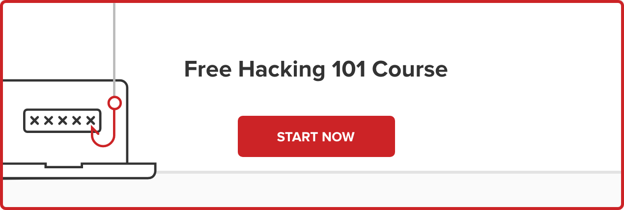 Free Hacking 101 Course