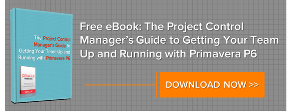 Download the Project Control Manager's Guide to Getting Your Team Up and Running with Primavera P6