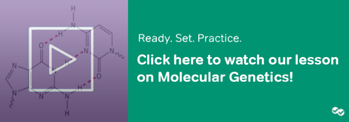 click here to watch our lesson on molecular genetics