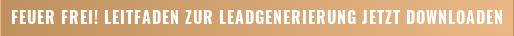 Download/Leitfaden: Leadgenerierung mit Inbound-Marketing