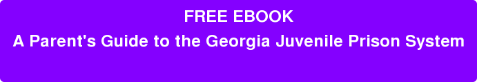 FREE EBOOK A Parent's Guide to the Georgia Juvenile Prison System