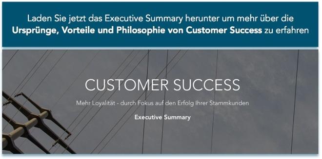 Jetzt das Executive Summaryherunterladen