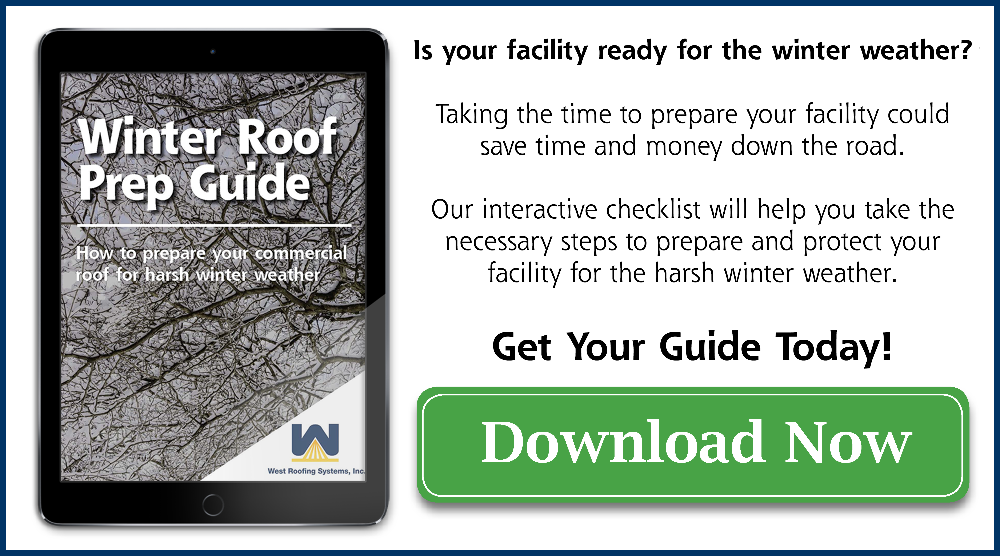 Download your guide today!