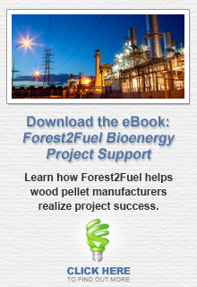 The Forest2Fuel Bioenergy Project Support eBook