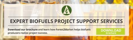 Bioenergy, Biofuels & Biochemicals Project Support