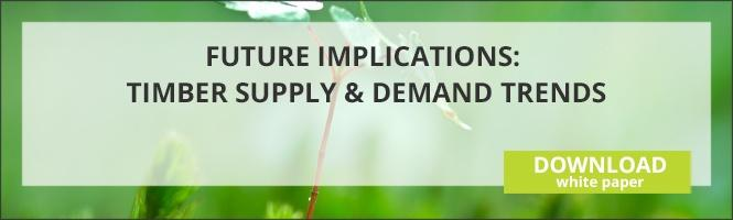 Future Implications Timber Supply and Demand Trends