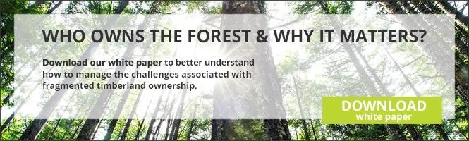 Forest Ownership