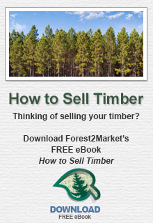 How to Sell Timber